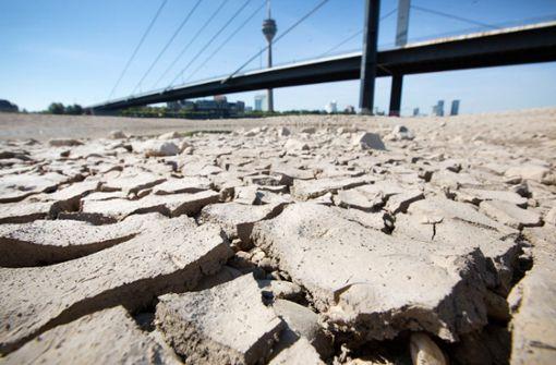 Meteorologen warnen vor nächstem Dürresommer