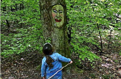 Auf den Spuren der Fratzen im Forst