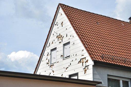 Gewaltige Schäden durch Hagelsturm im Sommer wirken fort