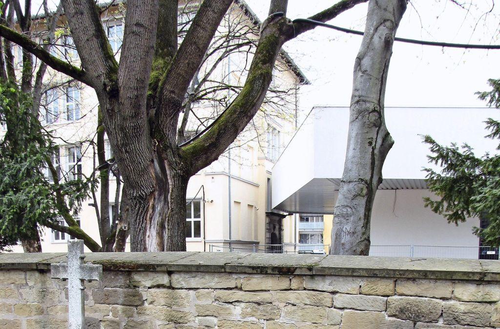 Vom Uff-Kirchhof klettern Jugendliche in den Schulhof. Foto: Edgar Rehberger