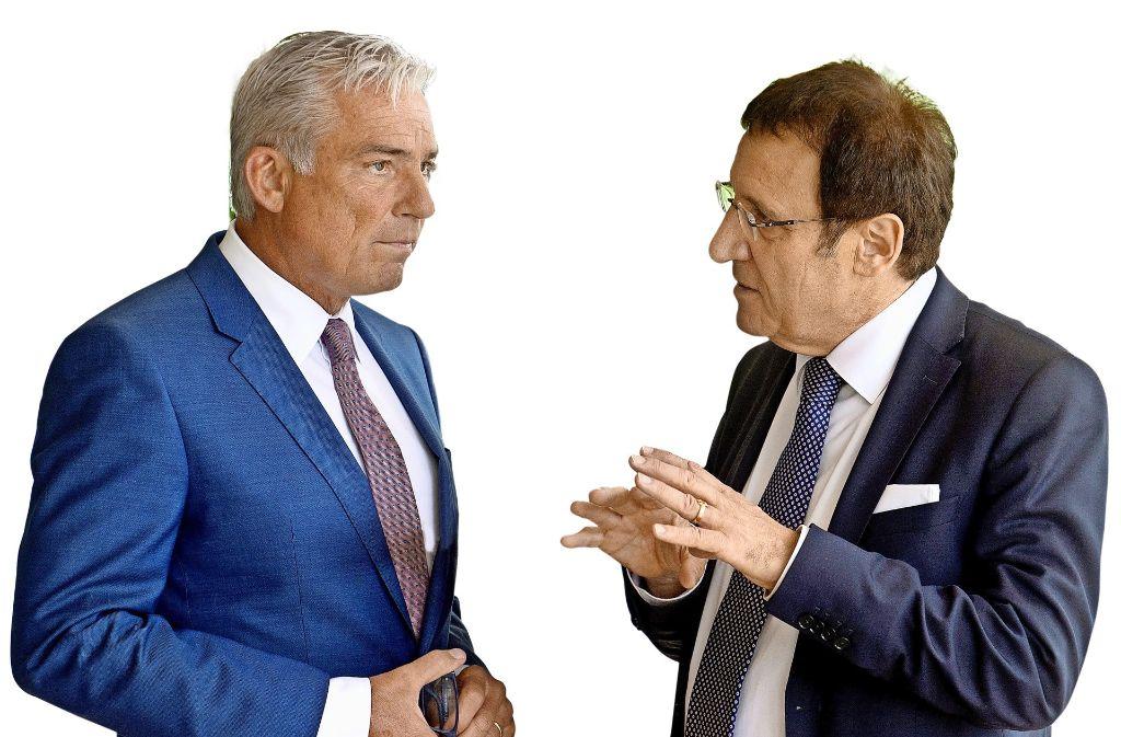 Schwieriges Verhältnis: CDU-Landeschef Thomas Strobl (links) und Landtagsfraktionschef Wolfgang Reinhart. Foto: dpa