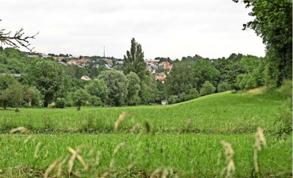 So schön ist das Strudelbachtal zwischen Weissach und Flacht – viele wollen hier keinen Staudamm sehen. Foto: factum/Bach