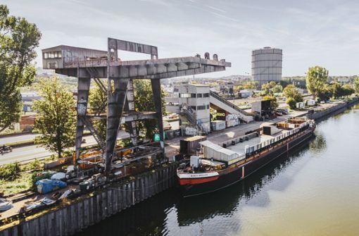 Die Stadt genehmigt    Fridas Pier