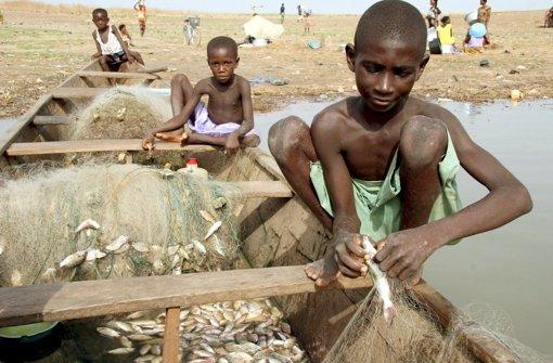 In Afrika werden Jugendliche massenhaft als Arbeitssklaven ausgebeutet. Foto: