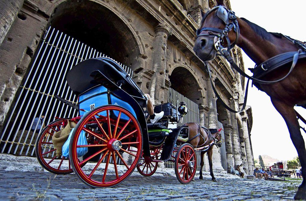 Der 61-Jährige wurde mehrere Meter von einer Pferdekutsche mitgeschleift. (Symbolbild) Foto: dpa/Massimo Percossi
