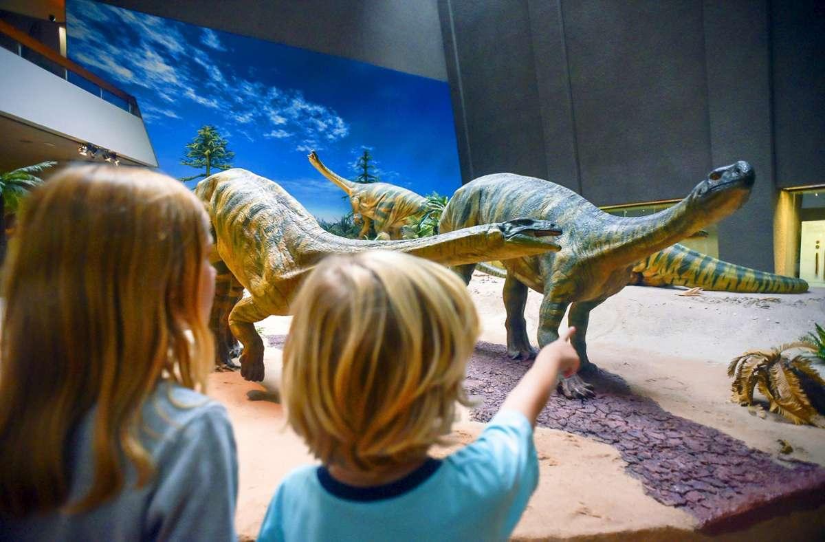 Das Naturkundemuseum am Löwentor ist ein Magnet für Kinder, im Sommer gibt es auch in vielen anderen Häusern Ferienprogramme. Foto: Lichtgut/Max Kovalenko