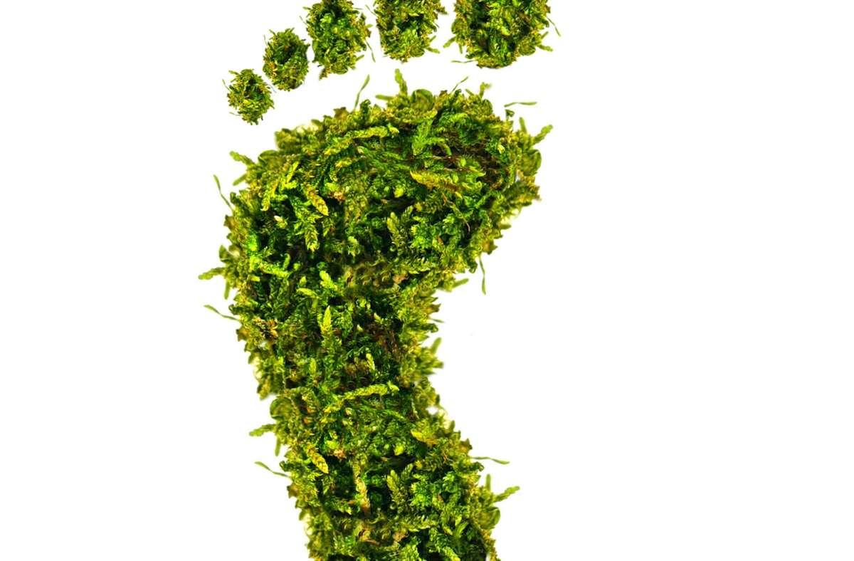 Um den ökologischen Fußabdruck kann es bei Projekten von Jugendlichen gehen, die sich um den neuen Nachhaltigkeitspreis der Region bewerben. Foto: stock.adobe.com/Jenny Sturm