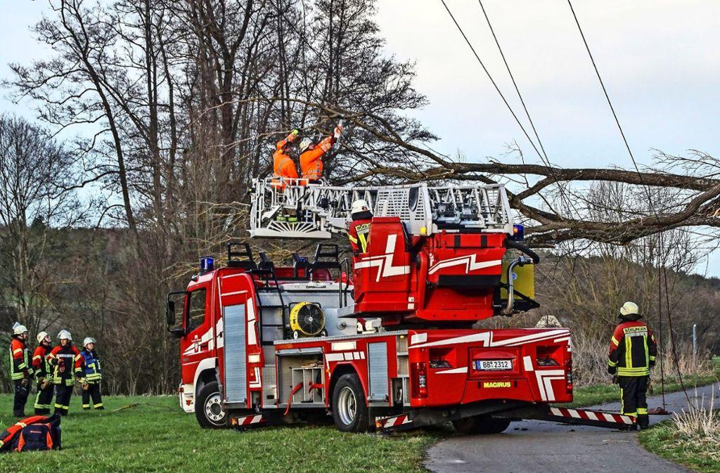 Als nach einer Windböe ein Baum auf eine Stromleitung fällt, gehen in Waldenbuch die Lichter aus. Foto: SDMG