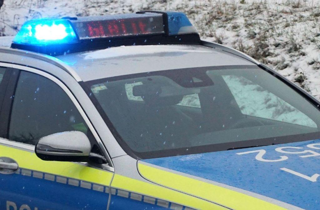 Laut Polizei waren die beiden Männer betrunken, die die Kutsche gesteuert haben (Symbolfoto). Foto: SDMG