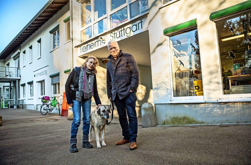 Gabriele Munk und Andreas G. Winter mit der braven Bruna Foto: Lichtgut/Julian Rettig