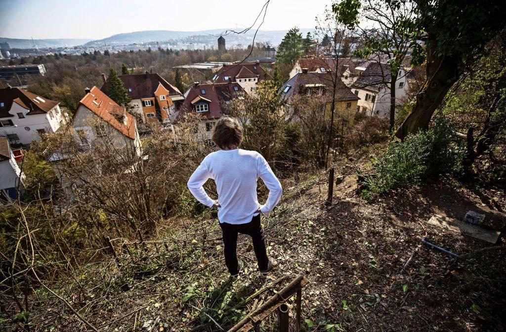 Februar 2019: Ein Anwohner betrachtet fassungslos  den abgeholzten Hang am Killesberg. Die Stadt hat jetzt das Bußgeldverfahren gegen sich selbst eingestellt. Foto: /Lichtgut/Leif Piechowski