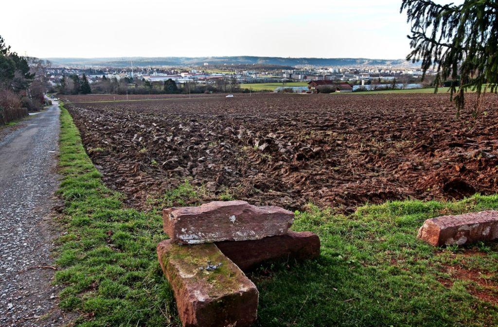 Das Neubaugebiet soll am westlichen Rand von Korntal entstehen. Foto: factum/Archiv