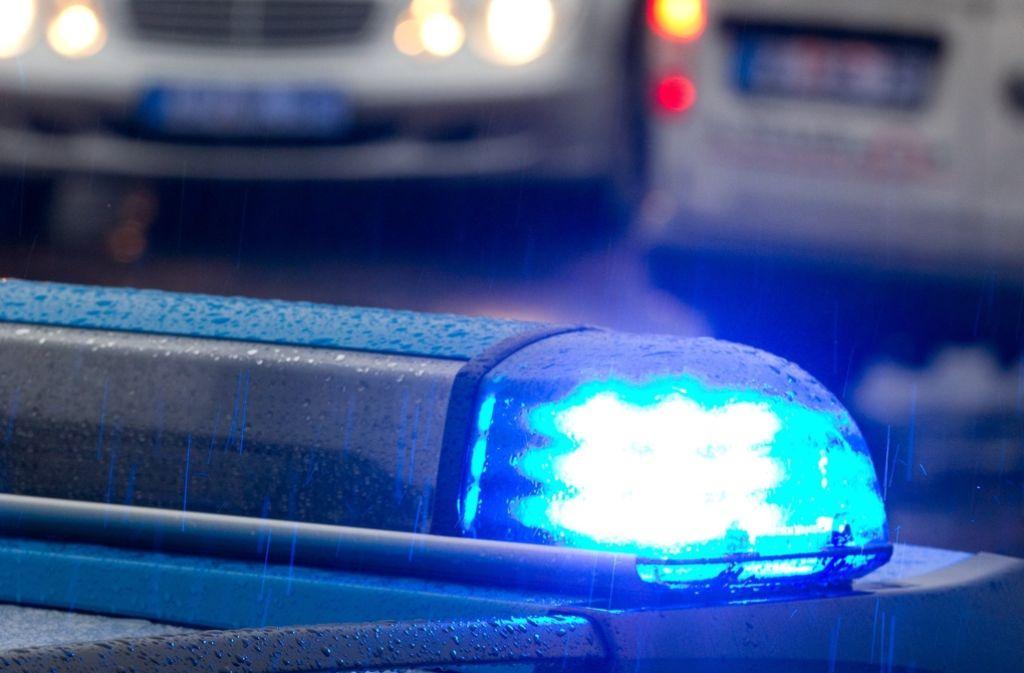Ein Straßenfest in Remseck rief die Polizei auf den Plan. Foto: dpa