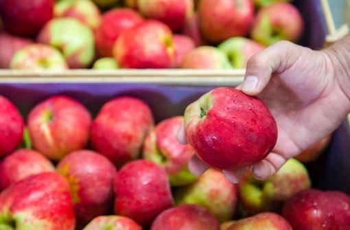 Neue Diät verspricht gesundes und umweltfreundliches Essen