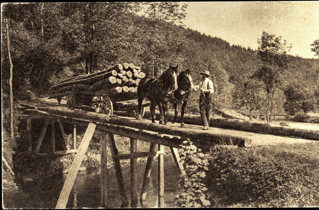 Vor 100 Jahren:  Holzfuhrwerke wurden mit Ochsen gezogen oder mit Pferden wie hier im Schwarzwald. Foto: