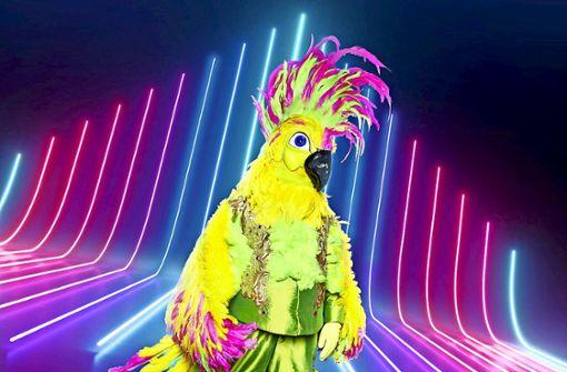 Welcher Popstar versteckt sich in diesem Vogel?