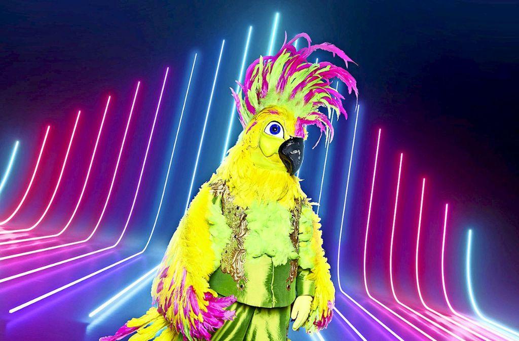 """Versteckt sich womöglich Helene Fischer in diesem Kostüm? """"The Masked Singer"""" wird es bald enthüllen. Foto: Pro Sieben"""