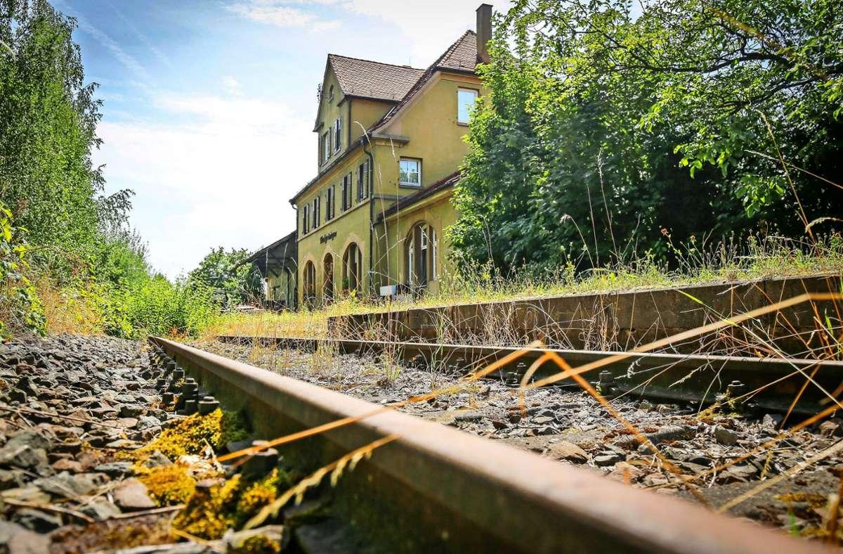 Bahn oder Stadtbahn? Die Gleise bis nach Markgröningen sind vorhanden, aber zugewuchert. Foto: factum//Simon Granville