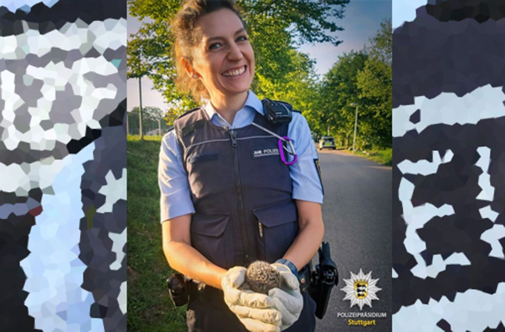 Igelrettung geglückt: Die Stuttgarter Polizei hat an der #goodactchallenge teilgenommen. Foto: Facebook Polizei Stuttgart/dpa/Montage: MHS Digital