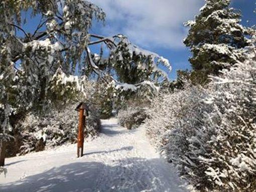 Winterimpressionen aus dem Altkreis