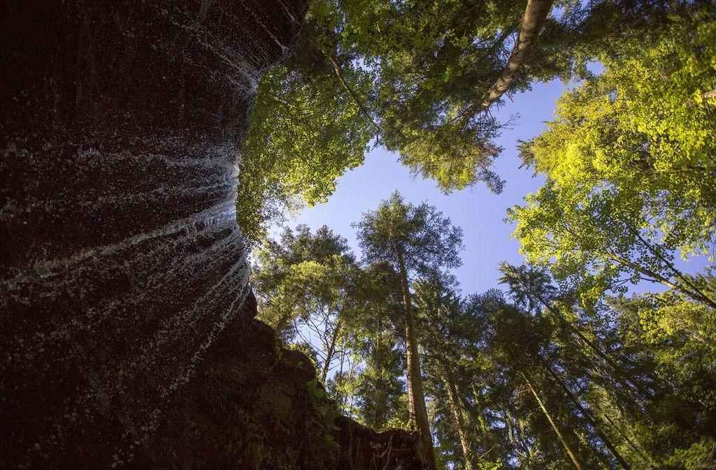 Naturschauspiel: Wasserfall in der Hörschbachschlucht bei Murrhardt Foto: Stadtverwaltung Marbach