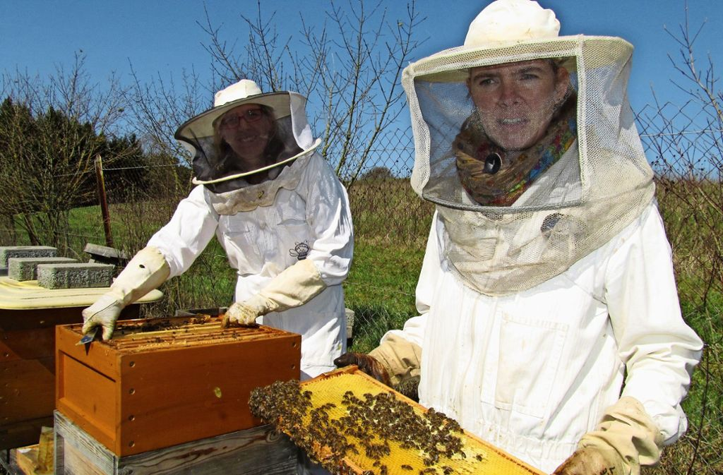 Die Imkerin Martina Schmid aus Waldenbuch (rechts im Vordergrund mit Waben) hat vor vielen Jahren mit einer Kollegin mit der Bienenzucht begonnen. Heute besitzt sie zwölf Bienenvölker. Foto: Claudia Barner