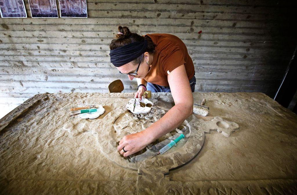 Die Restauratorin Heidi Mattern arbeitet akribisch, um den weiteren Verfall der Kulturdenkmale zu stoppen. Foto: Horst Rudel