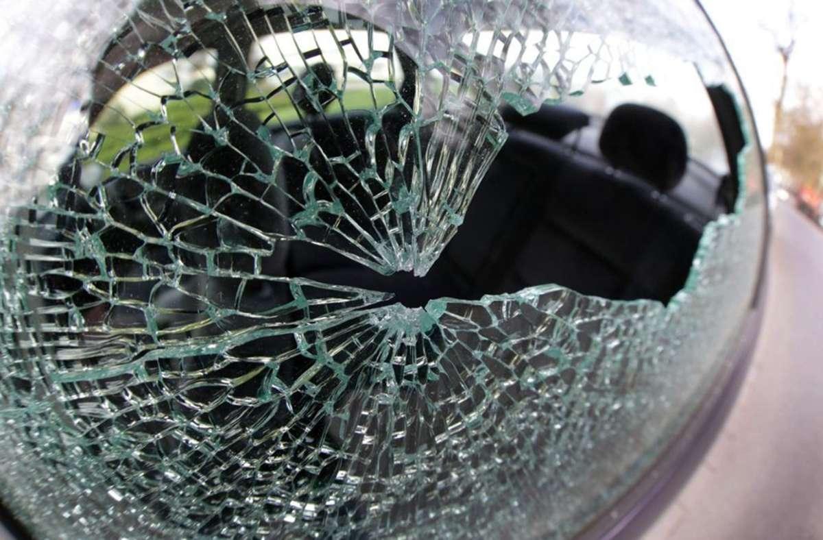 Die Polizei bittet um Zeugenhinweise. (Symbolbild) Foto: dpa