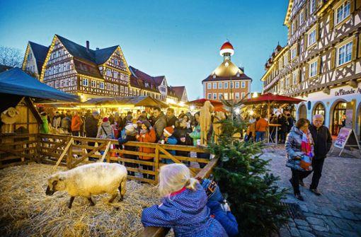 Schafe, Kunst und Besuch vom Nikolaus