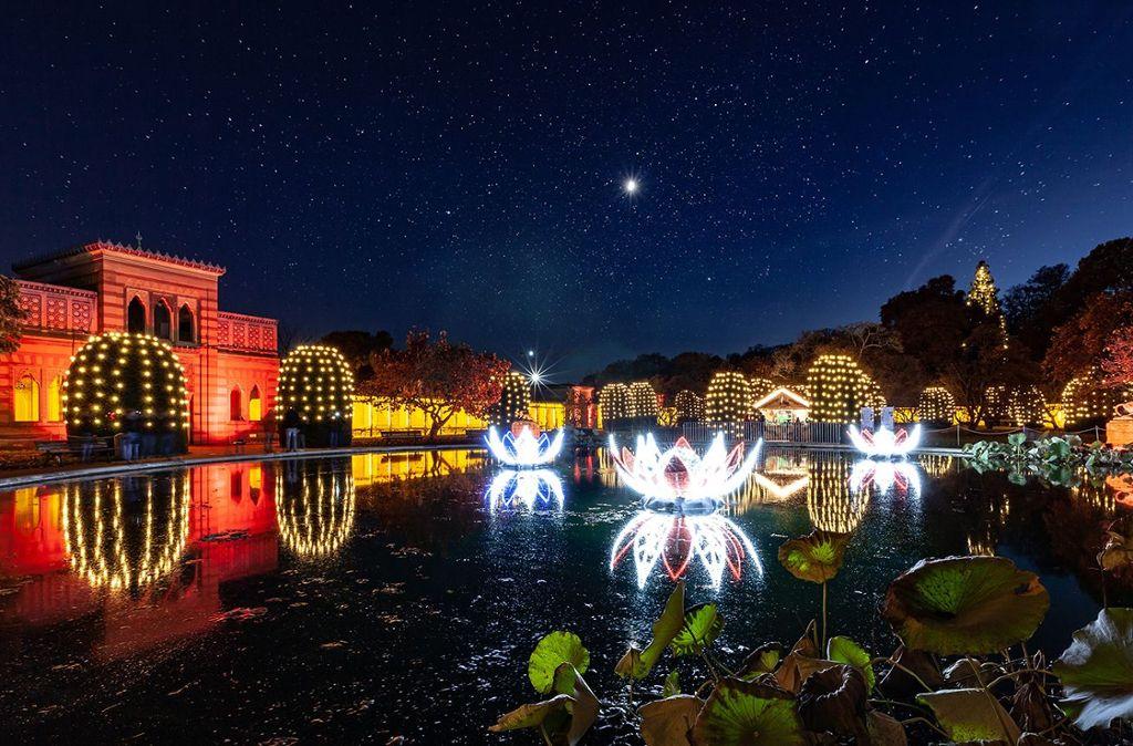 Der Seerosenteich leuchtet in zauberhaftem Licht. Foto: Christmas Garden Deutschland