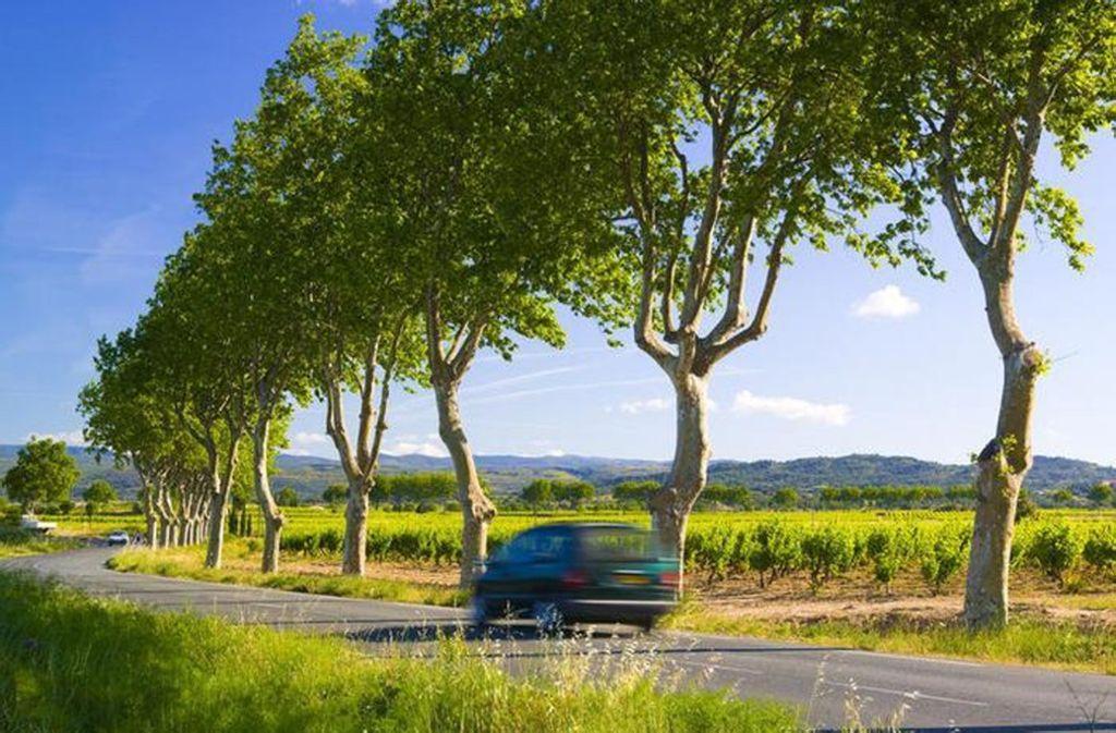 Französische Landstraße: Frankreichs Regierung hat beschlossen, die Höchstgeschwindigkeit dort zum 1. Juli von 90 auf 80 Stundenkilometer herabzusetzen Foto: Mauritius