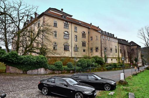 Investor hält Neues Schloss  im Dauerschlaf