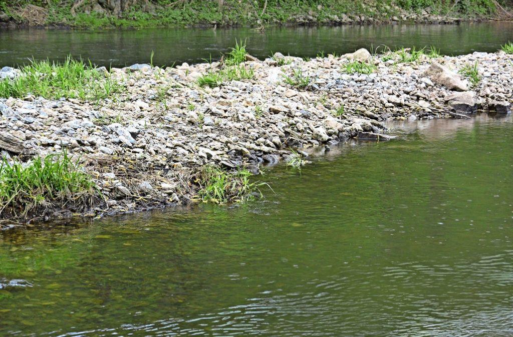 Auch  Kiesinseln, die in der Jagst angelegt wurden, sollen dazu beitragen, dass die Renaturierung voranschreitet. Foto: Tanja Kurz