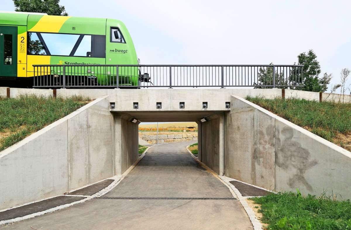 Jugendliche dürfen die Bahn-Unterführung Hälde besprühen. Foto: factum/Simon Granville
