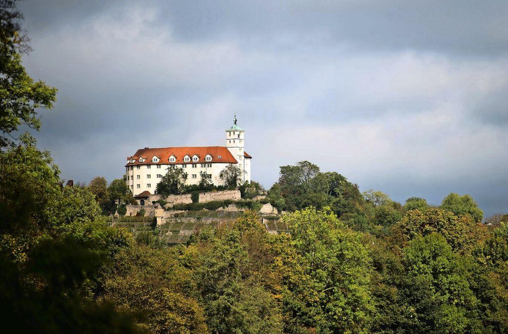 Hoch über Vaihingen an der Enz thront das Schloss Kaltenstein – es ist verwaist. Foto: dpa