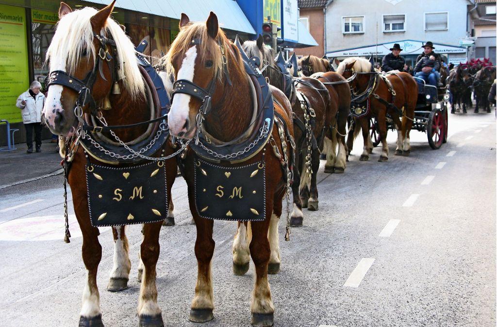 Am Wochenende steht in der Stadt alles im Zeichen der Pferde. Foto: Archiv/Götz Schultheiss