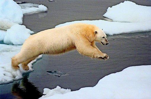 Wer verliert im Klimaroulette, wer gewinnt?