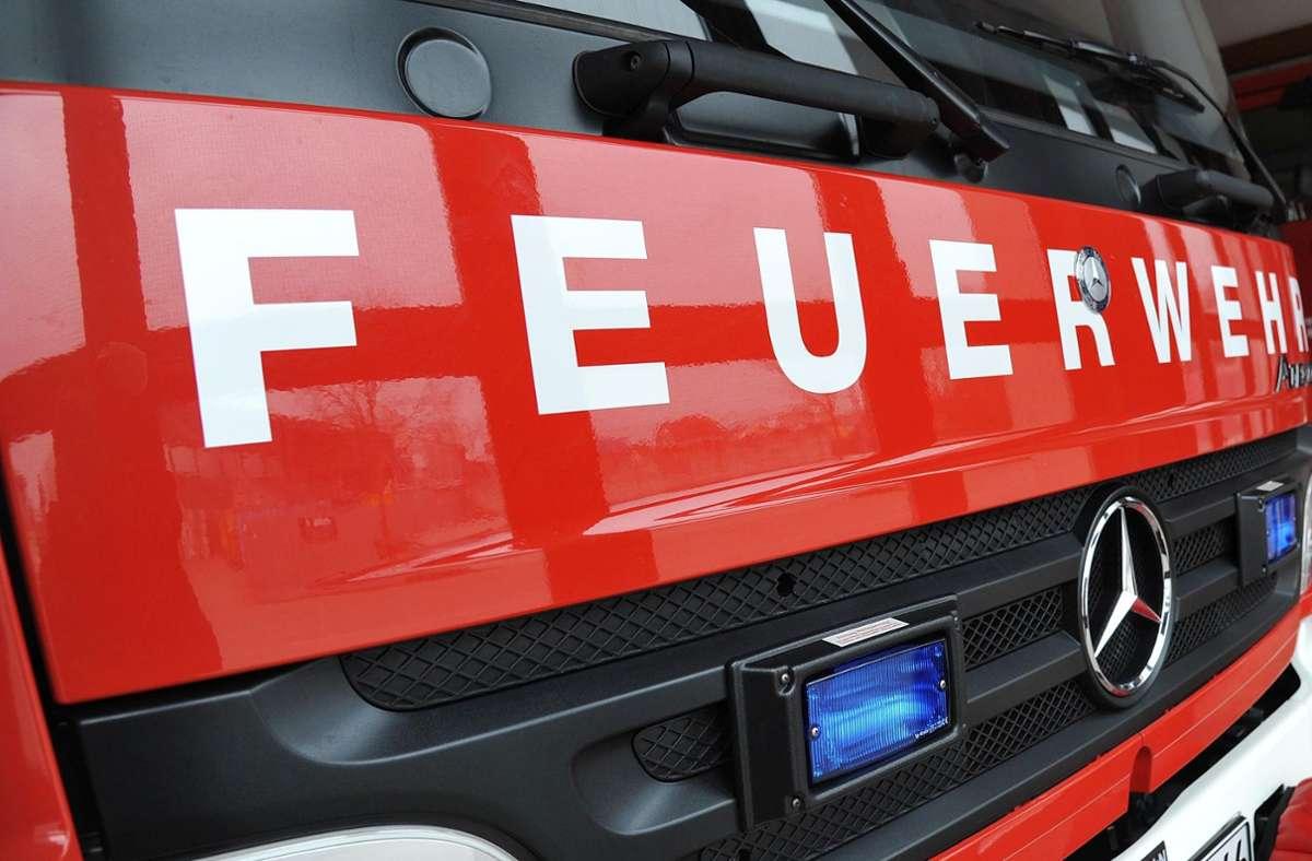 Sieben Einsatzkräfte der Feuerwehr sind angerückt, um die Brände zu löschen. Foto: KRZBB/T. Bischof