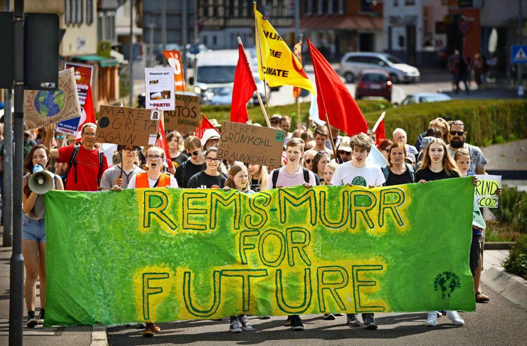 Ein bunter Demonstrationszug hat sich durch Backnang bewegt. Foto: