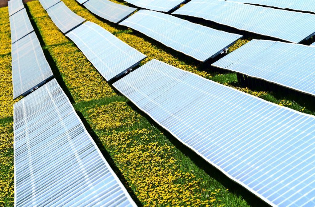 Solaranlagen auf dem freien Feld. Die Kosten sind radikal gesunken. Foto: dpa