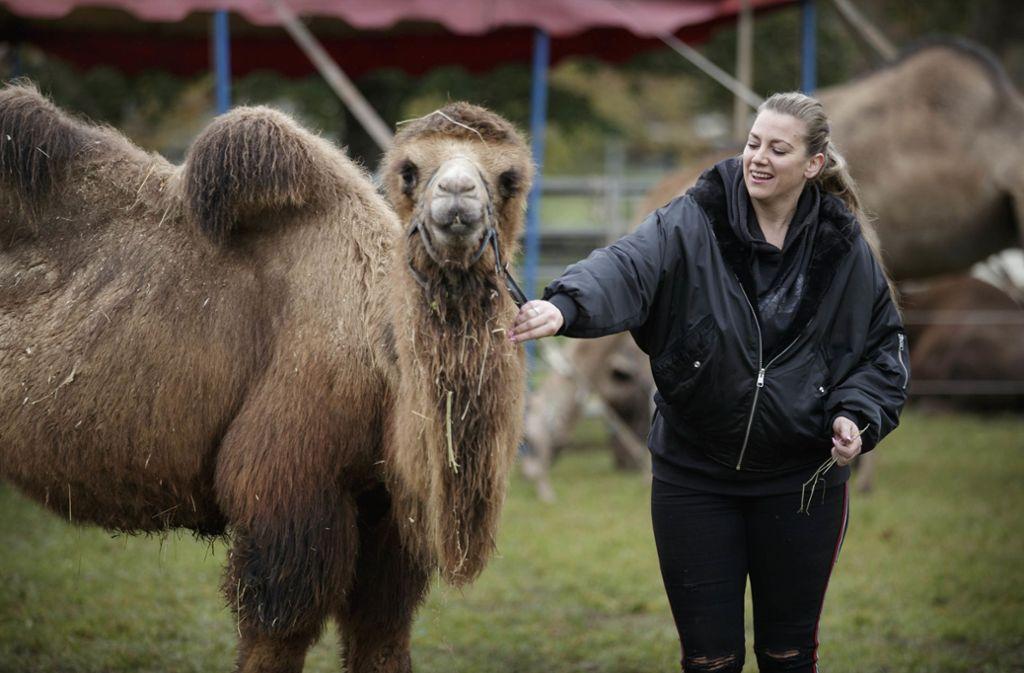 Tina Quaiser mit Schakal, einem der drei Kamele. Foto: Gottfried Stoppel