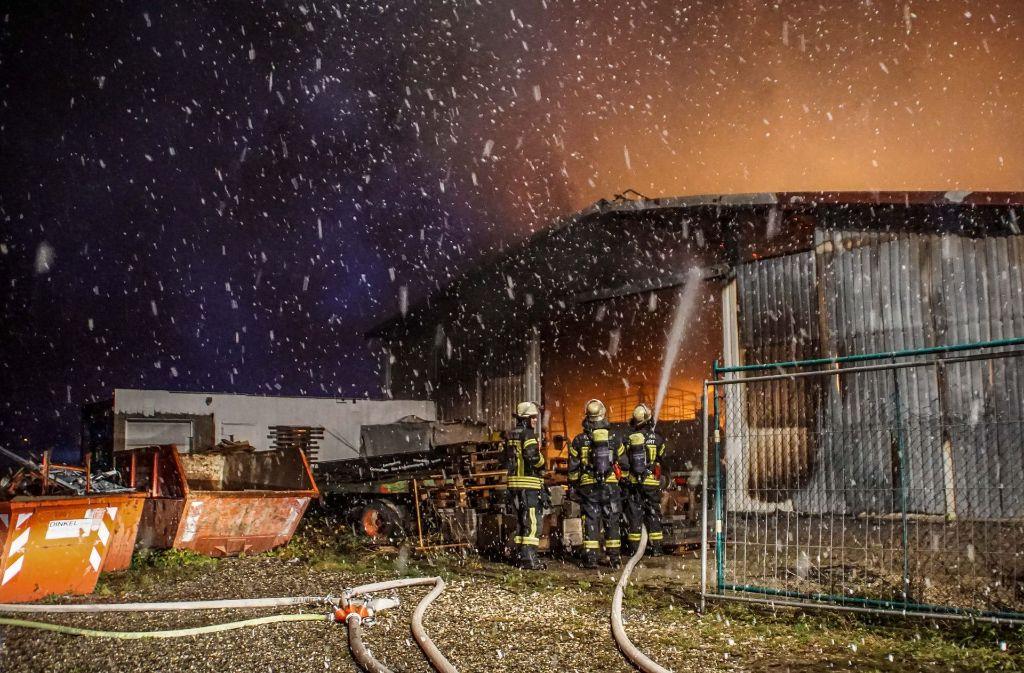 Die Feuerwehr ließ die Halle in der Nacht kontrolliert abbrennen. Foto: SDMG