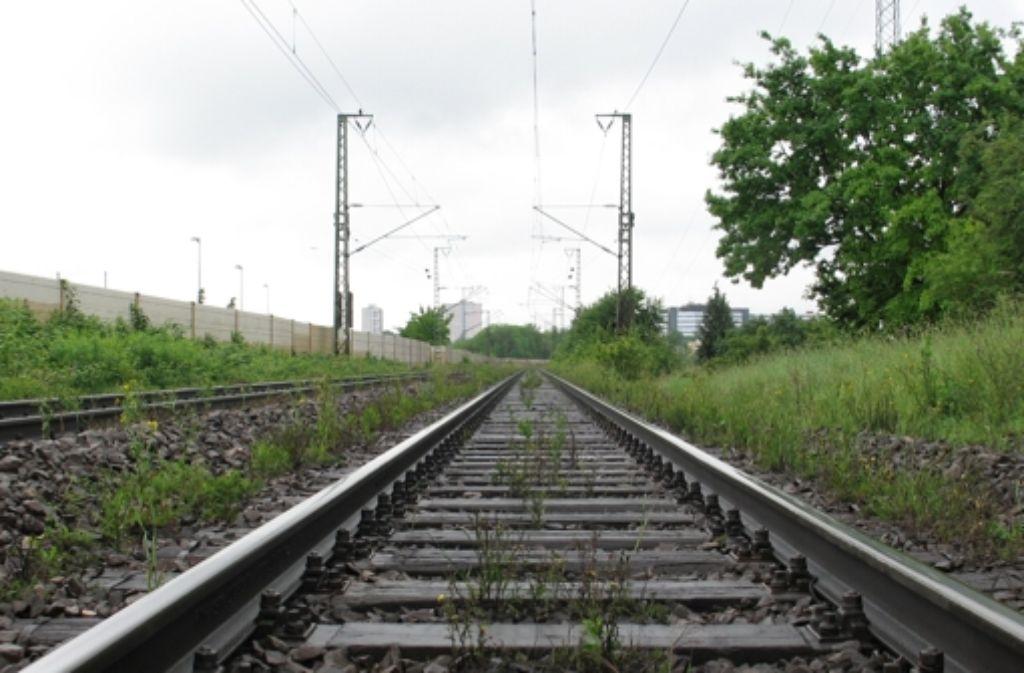 Die Schusterbahn, hier ein Abschnitt beim Stadtteil Freiberg, ist in erster Linie eine Verbindung für Güterzüge. Foto: Zeyer