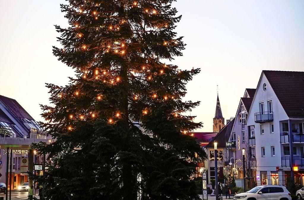 Ein stattlicher Weihnachtsbaum schmückt den Rutesheimer   Rathausplatz. Foto: factum/Jürgen Bach