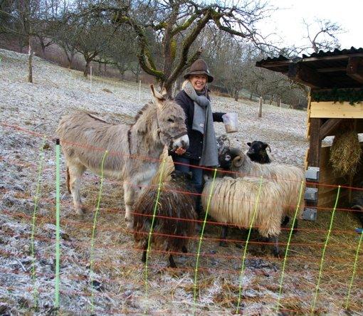 Vom Esel, der sich als Schaf fühlt