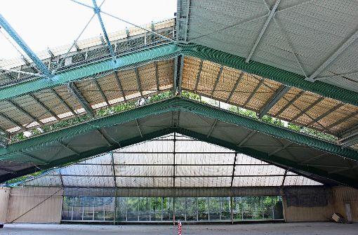 Die Tennishalle wird umgebaut