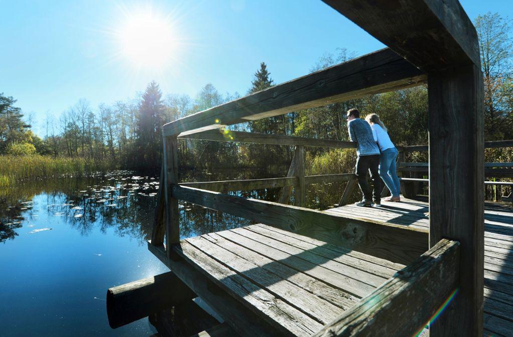 Ein Paar tankt Sonne am Hochmoor im Naturschutzgebiet Wurzacher Ried. Foto: picture alliance / dpa