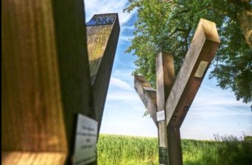 Kreuze? Betonpfosten von Straflagern? Foto: Gottfried Stoppel