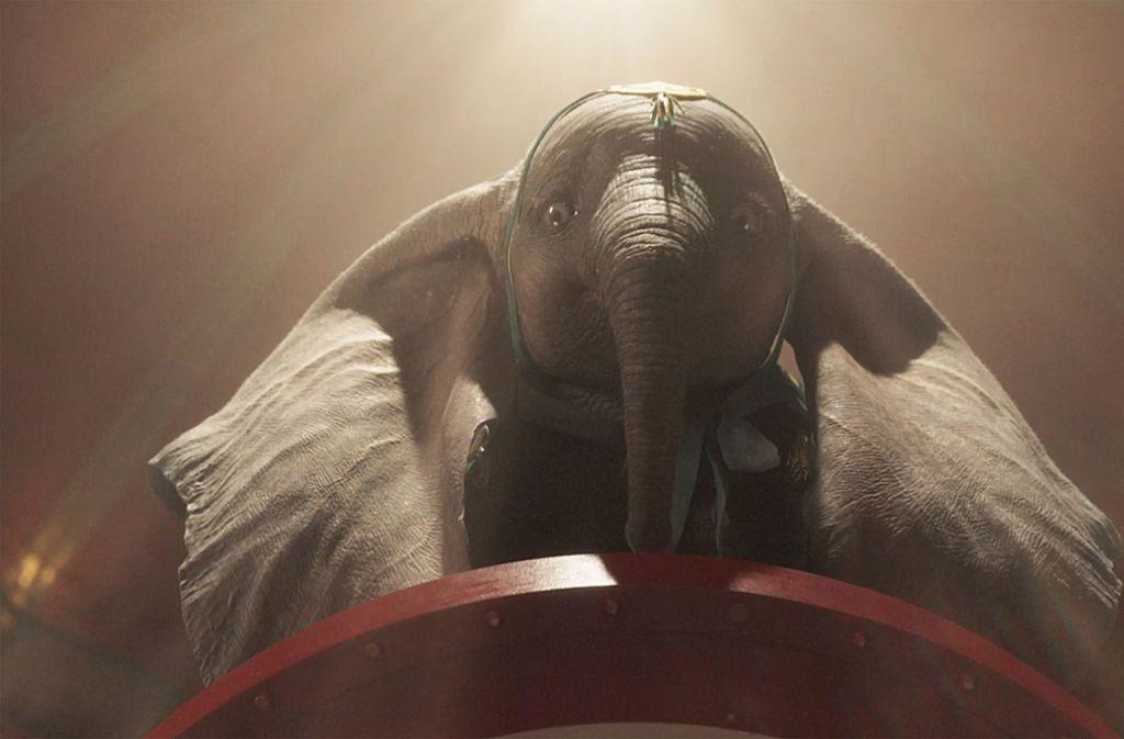 Auf ihm lastet die Hoffnung einer ganzen Kompanie: der fliegende Elefant Dumbo Foto: Verleih