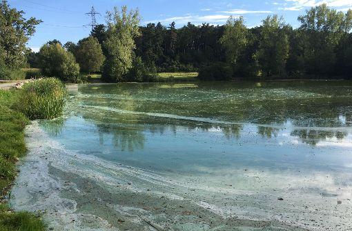 Unbekannte kippen Farbe in einen See